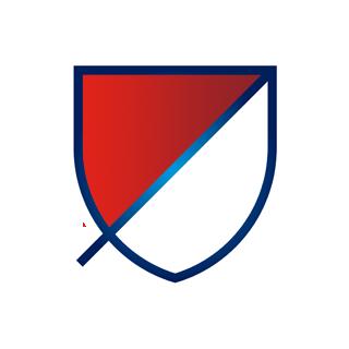 Major Soccer League (6)