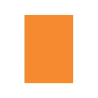 Netherlands (11)